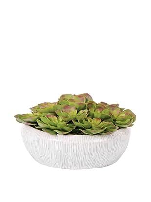 Lux-Art Silks Echeveria in Small Shiny White Bowl, Green