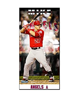 Steiner Sports Memorabilia Mike Trout Los Angeles Angels Player Profile Framed Photo