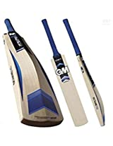 GM OCTANE Striker Kashmir Willow Cricket Bat