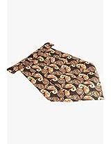 Brown Cravat The Vatican