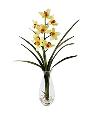 Winward Cymbidium Orchid in Vase, Yellow