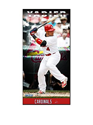 Steiner Sports Memorabilia Yadier Molina St. Louis Cardinals Player Profile Framed Photo