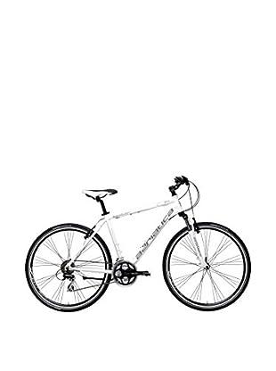 Cicli Adriatica Fahrrad Boxter Gs