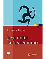 Java unter Lotus Domino: Know-how für die Anwendungsentwicklung (Xpert.press)