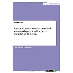 Sintesis de Zeolita Ts-1 Con Porosidad Jerarquizada Para Su Aplicacion En Epoxidacion de Olefinas