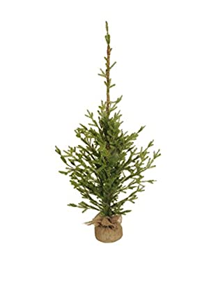 Evergreens Árbol De Navidad Verde