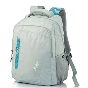Skybags Octane 03 Grey Laptop Backpack
