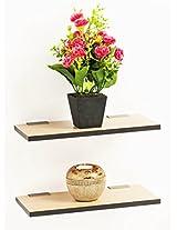 Bluewud Wall Shelf & Display Rack - Stellar Series (Pine, 6 x 11.75 inch, set of 2)