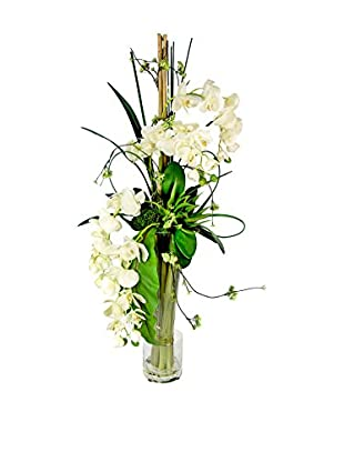 Creative Displays Tall Orchid & Cactus in Vase, White/Green