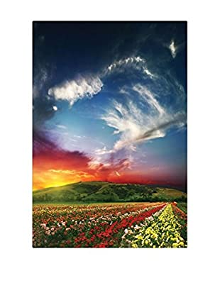 Best seller living Leinwandbild Sunset, Colorful Flowers