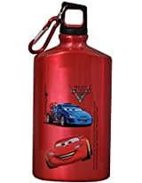 Disney Cars Metal Sipper, Multi Color
