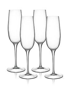 Luigi Bormioli Set of 4 Allegro 8-Oz. Champagne Flute Glasses