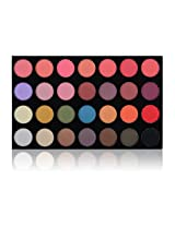 SHANY The Masterpiece 28 Colors Blush/Shadow Combination Palette/Refill, Flirt Expert