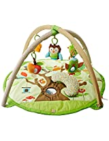 Skip hop Treetop Friends Activity Gym, Multi Color