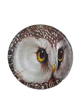 Victoria Fischetti Owl Head Paperweight
