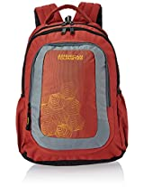 American Tourister Code Red and Grey Casual Backpack