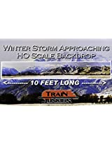 Train Junkies Winter Storm Approaching Railroad Backdrop Ho Oo Scale