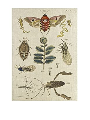 French Linen Collection Nature's Museum Tapestry