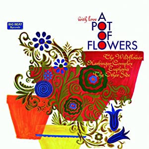 With Love: Pot of Flowers
