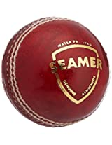 SG Seamer Leather Ball - Red