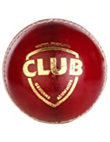SG Club Cricket Ball-White