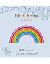 Bindi Baby Colors (Punjabi): A Colorful Book for Punjabi Kids