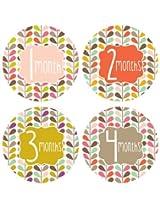 Lucy Darling Shop Monthly Baby Sticker - Gender Neutral - Chalkboard - Months 1-12