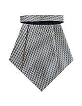 Navaksha Micro Fibre Silver Cravat