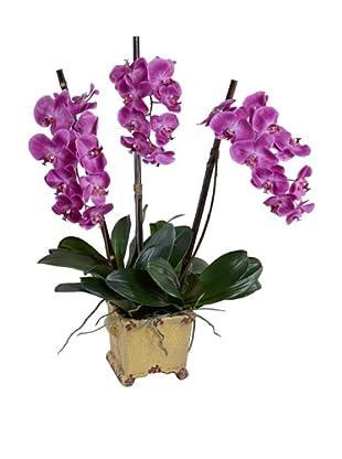 New Growth Designs Faux Phalaenopsis Orchid (Fuschia)