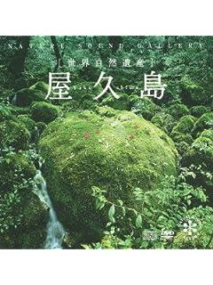 奈良・京都・鎌倉……古都めぐりに税金がかかる!?