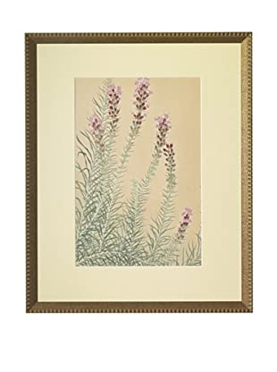 1929 Botanical Japanese Woodblock Liatris