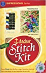 Anchor Stitch Kit - Kingfisher Duo