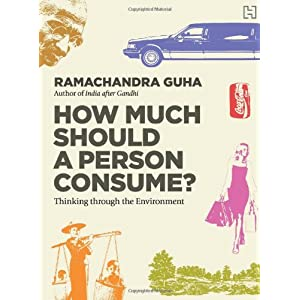 How Much Should a Person Consume?: Thinking through the Environment