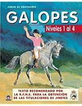 Galopes / Gallops: Niveles 1 al 4 / Levels 1 to 4 (Curso De Equitacion / Equitation Course)