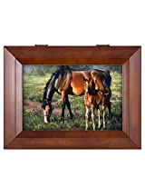 Pretty as a Picture Horse and Colt Wood Finish Jewelry Music Box - Plays Tune You Are My Sunshine
