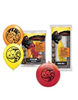 Pioneer National Latex DreamWorks How To Train Your Dragon 2 6 Balloons/4 Punch Balls, Assorted