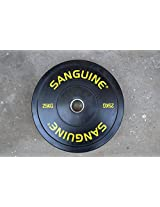 Sanguine Olympic Rubber Bumper Plate - 25Kg