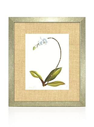 Orchid II, Silver/Bamboo