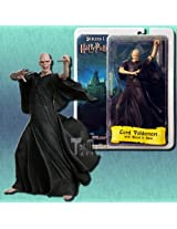 Harry Potter vs. Voldemort Action Figure Boxed Set by N