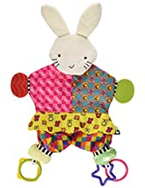 Amazing Baby: Blanket Teether Bunny