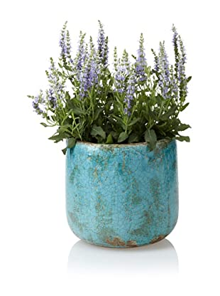 Wald Imports Decorative Ceramic Planter, Antique Blue