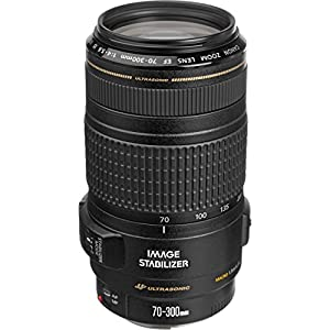 Canon EF 70-300mm F/4-5.6 0345B003AA IS USM Telephoto Zoom Lens (Black)