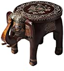 Brihadratha Solid Wood End Table in Painted Multi-color with Mudramark