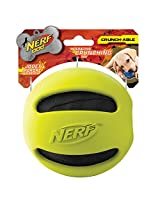 Nerf Dog Crunch and Squeak Rubber Ball Dog Toy, Medium/Large, Green