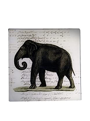 Twigs and Moss African Series Elephant Glass Tray