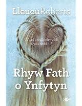 Rhyw Fath o Ynfytyn (Welsh Edition)