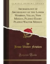 Archaeology of Archeology of the Lower Mimbres, Valley, New Mexico, Plates) Eight Plates) Walter Mexico (Classic Reprint)