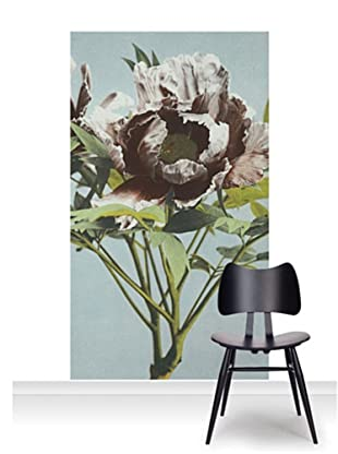 Victoria and Albert Museum Tree Peony Mural (Accent)