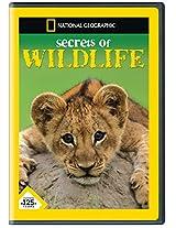 Secrets of Wild Life