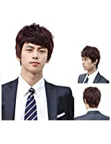New Fashion Mens Handsome Cosplay Party Short Curly Hair Full Wigs Brown Colors